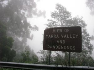 sign in yarra ranges national park covered in mist