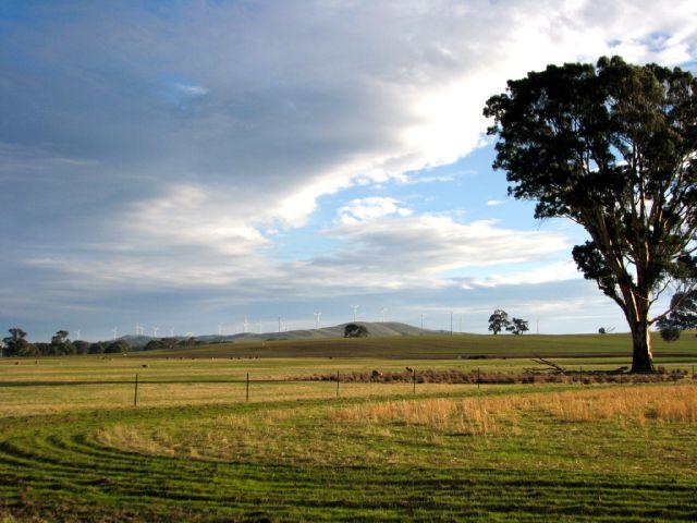 Farm land near Mt Langi Ghiran