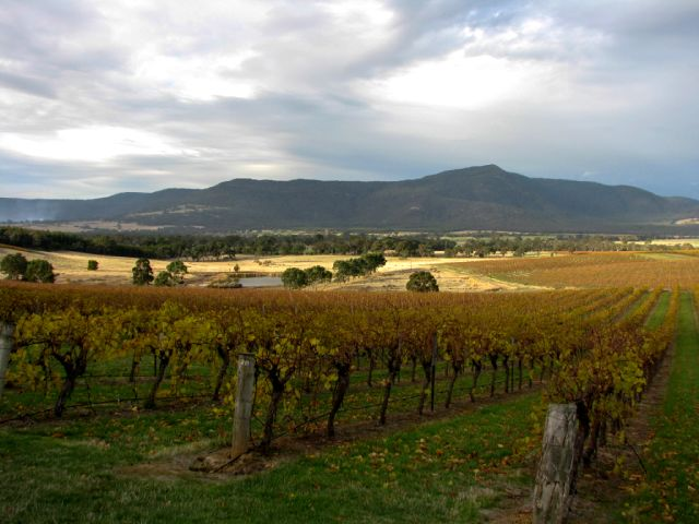 Mt Langi Ghiran winery
