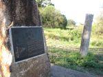 Dingo fence, Yelarbon