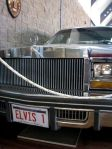 Elvis Presley car at Henry Parkes Centre museum