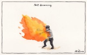 Omid: Cathy Wilcox, Sydney Morning Herald.