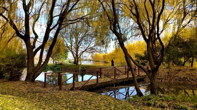 Worldmark Ballarat resort