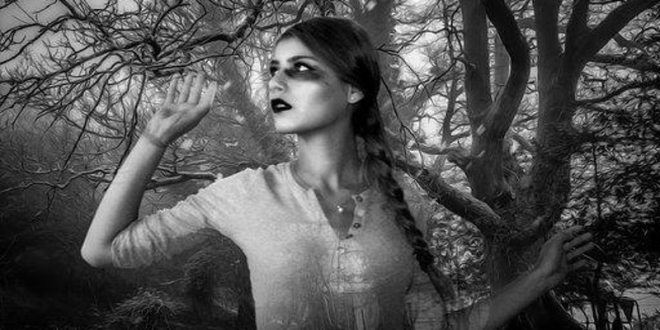 Dark Imaginings Gothic Tales Of Wonder
